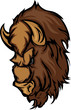 Buffalo Bison Mascot Head Cartoon