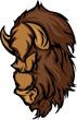 Buffalo Bison Mascot Head Cartoon
