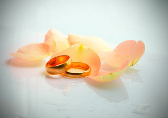 rose petals and golden rings for wedding