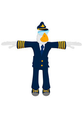 bird airlines