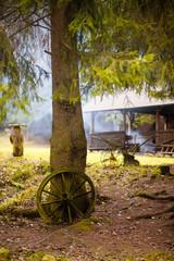 altes Wagenrad am Baum