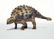 Photorealistic 3 D rendering of an Ankylosaurus.