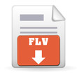 Download Button - FLV