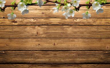 fiori di mela sul legno