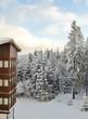 Haus vor Winterwald