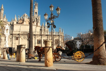 horse drawen carriage in front of Seville cathedral