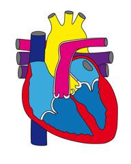 Heart1_