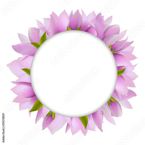 Magnolia With Circle