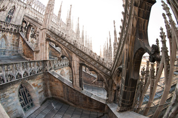 Detail of gothic cathedral. Milan, Italy.