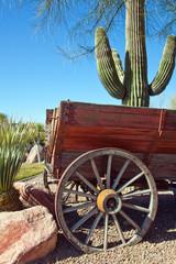 Wüste Nevada