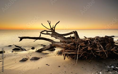 Beach © ck