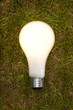 Lit Incandescent Light Bulb On Grass.