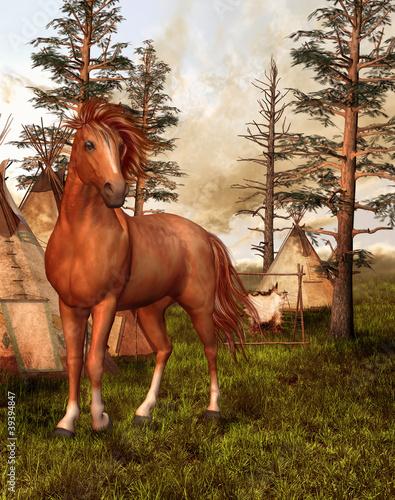 Fotobehang Indiërs Brązowy koń w starym lesie