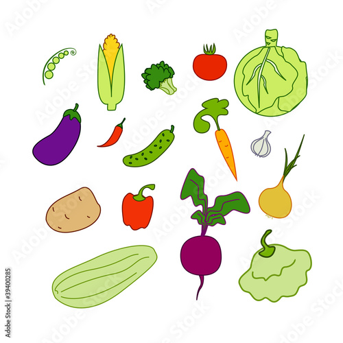 vegetables isolated(EPS 8) on white background