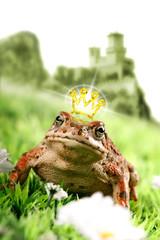 Rana con corona e castello sullo sfondo