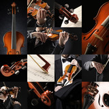the violinist collage: Musician playing violin
