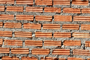 Red brick wall, square format