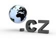 3D Domain cz mit Weltkugel