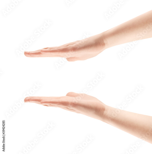 Framing Hands Isolated