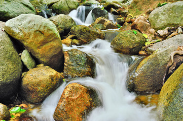 Water fall and rock and mountain foliage