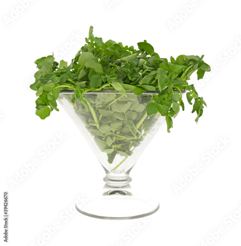 Watercress in large glass