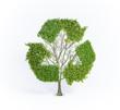Renewable tree