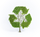 Renewable tree