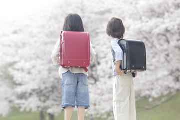 桜を見つめる小学生男女の後姿
