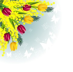 Mimosa tulips corner