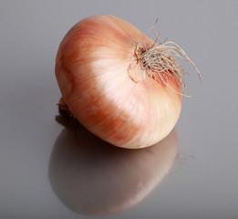 Fresh onion.
