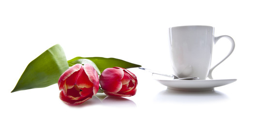 Tea and red tulips