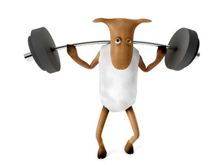 Sheepy and weights