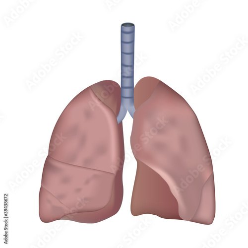 smokers lung medical eps10 vector illustration