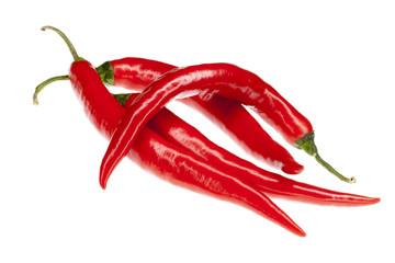 rote frische Chili Schoten isoliert
