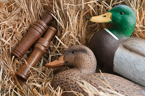 Leinwanddruck Bild duck decoy with stuffed and calls