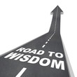 Road to Wisdom - Directions to Enlightenment and Intelligence