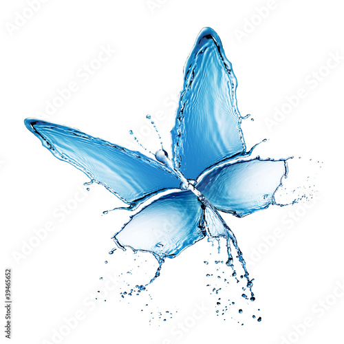 water splash buttefly isolated