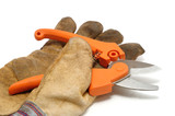 Pruning Shears and Leather Glove