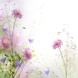 Fototapety Beautiful pastel floral border - blurred background