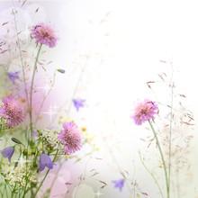 Belle frontière floral pastel - arrière-plan flou