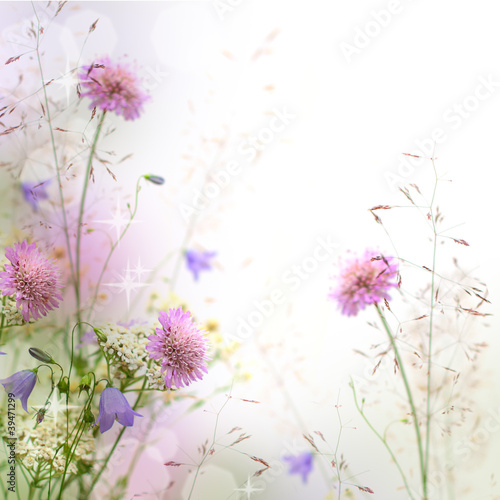 Beautiful pastel floral border - blurred background - 39471299
