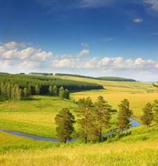 hills summer landscape
