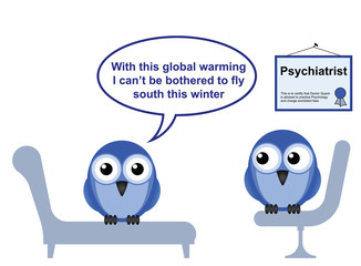 On the Psychiatric couch and global warming