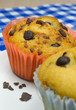 Close up of chocolate chip muffins with selective focus