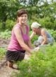 women working in  vegetable garden
