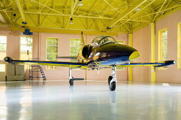 Jet airplane in the hangar