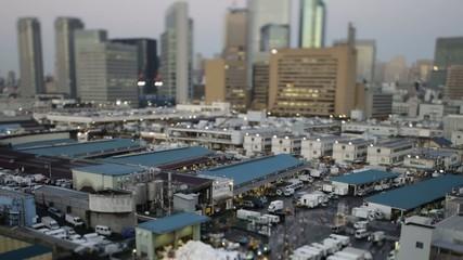 Time Lapse from Tsukiji market,in Tokyo,Japan