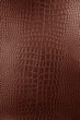 Brown Crocodile leather texture