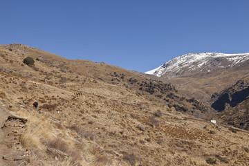 Paisaje en la Alpujarra