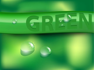 Vector abstract green background and water drops.